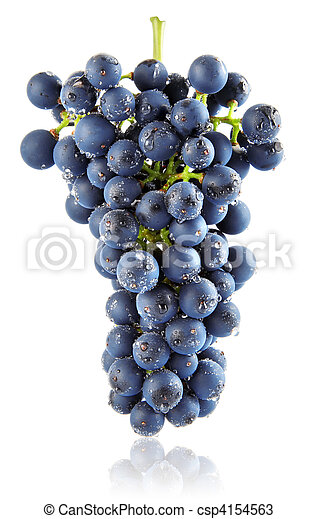 fresh blue grape cluster isolated fruit - csp4154563