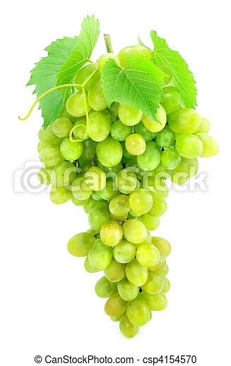 cluster of green grape isolated on white - csp4154570