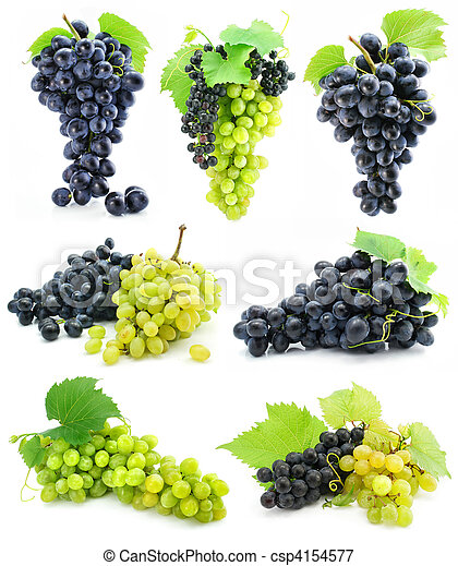 collection of ripe fruit grape cluster isolated - csp4154577