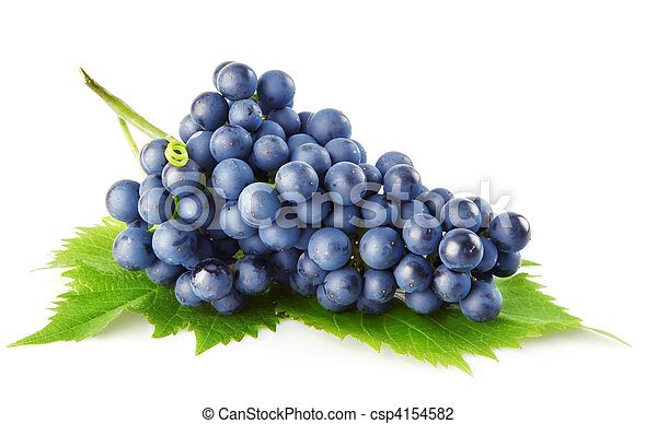 blue grape with green leaves isolated fruit - csp4154582