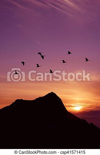Flying birds over purple background landscape vertical image