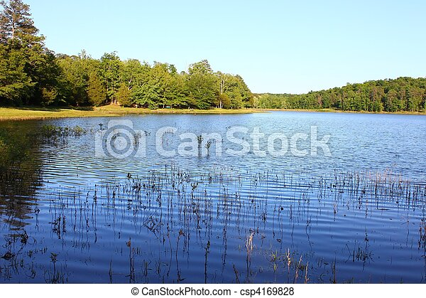 Tishomingo State Park - Mississippi - csp4169828