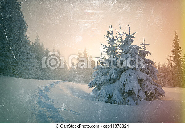 Trail in the snow. Christmas landscape in a mountain forest. Sun shines through the fog. Color toning. The effect of old photos from scuffs and scratches