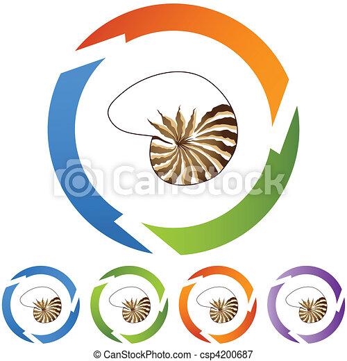 Seashell - csp4200687