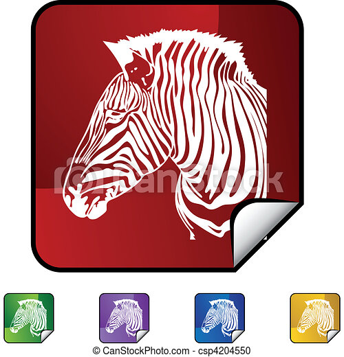Zebra - csp4204550