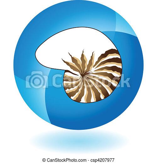Seashell - csp4207977