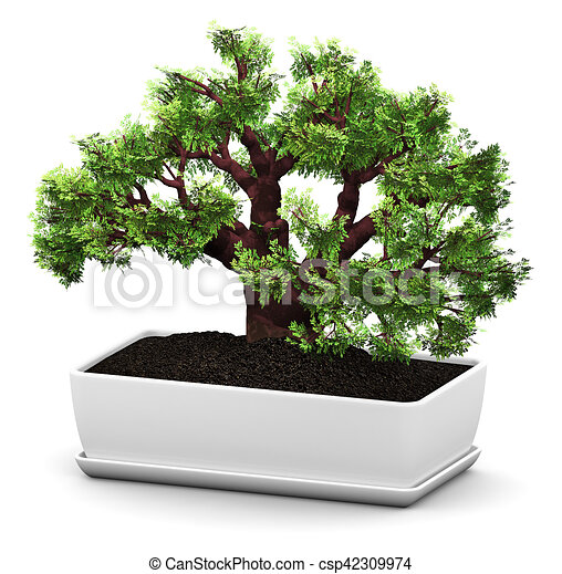 illustrations de bonsai fleur pot baobab arbre vert. Black Bedroom Furniture Sets. Home Design Ideas
