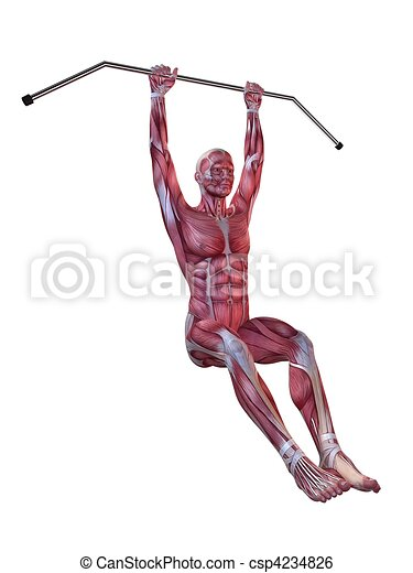 male workout - hanging leg raises  - csp4234826