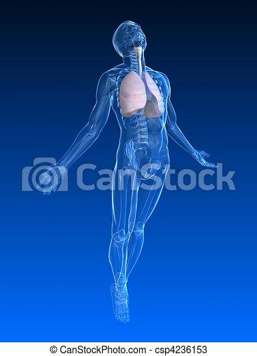 uprising human body  - csp4236153