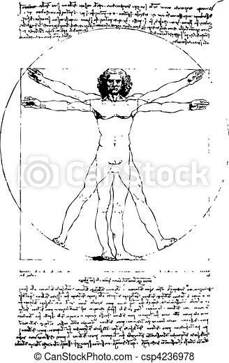 vector Vitruvian Man - csp4236978