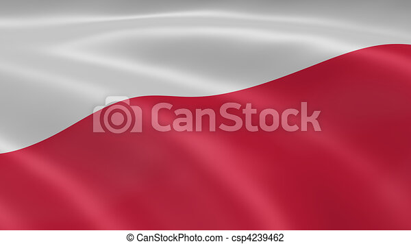 Polish flag in the wind - csp4239462