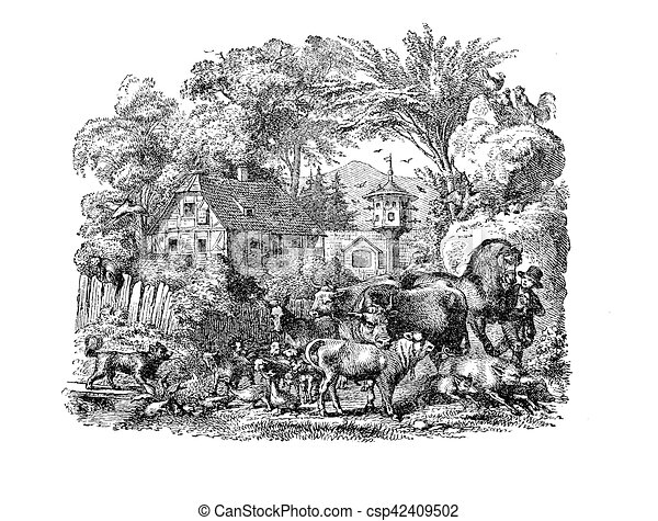 Courtyard farm with domestic animals, vintage engraving - csp42409502