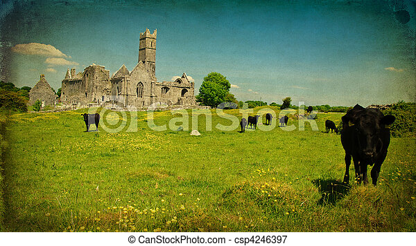 scenic irish ancient church abbey ruins landscape - csp4246397