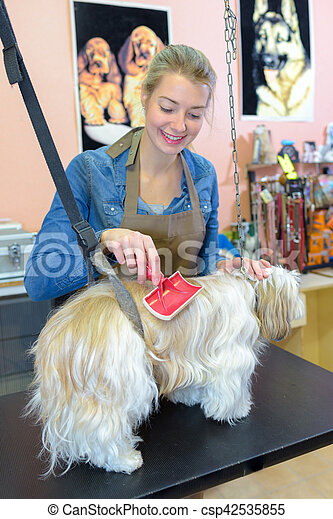 Pet groomer using brush