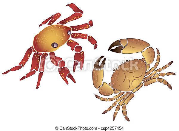 Crab - csp4257454