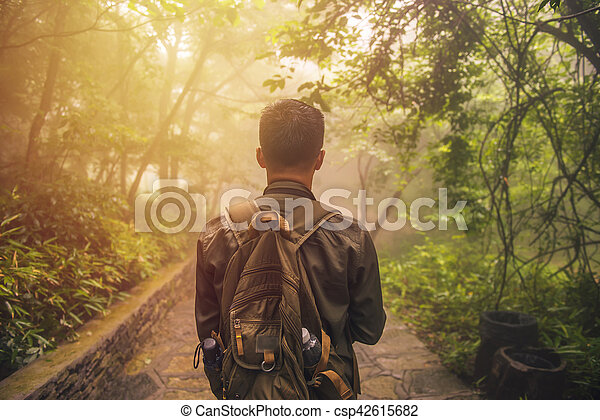 Man walking in forest with mist nature background, Travel Lifestyle and survival concept.