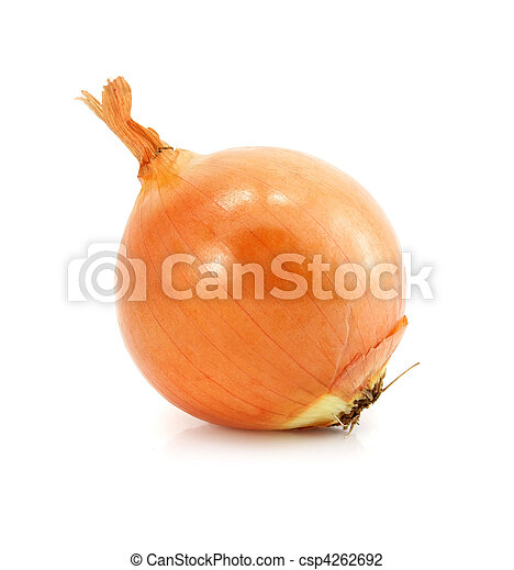 onion vegetable fruit isolated on white - csp4262692