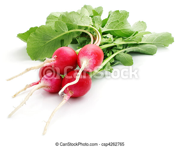 bunch fresh radish isolated - csp4262765