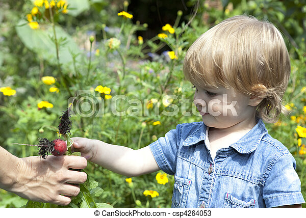 Baby giving mother radishes - csp4264053