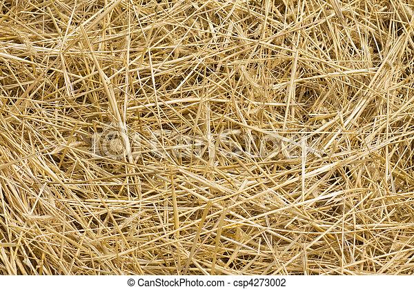 Hay background - csp4273002