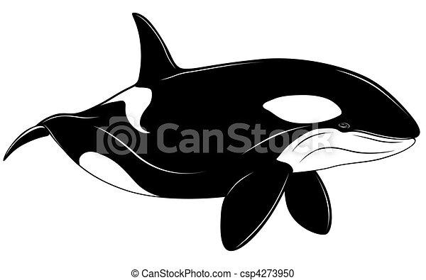Killer whale - csp4273950