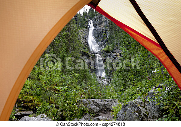 Camping in the Forest  - csp4274818