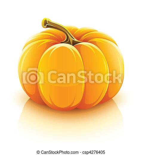 orange pumpkin vegetable - csp4276405