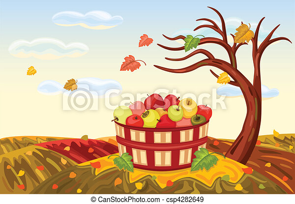 Rich apple harvesting in autumn - csp4282649