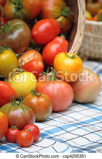 bounty of organic heritage tomatoes - csp4295381