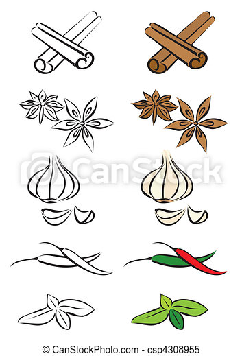 Various spices vector illustration - csp4308955