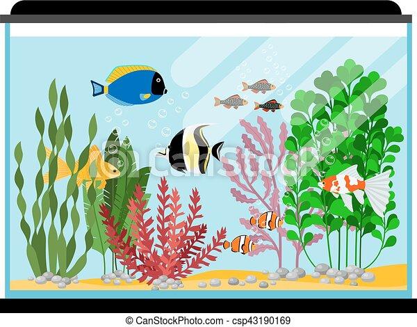 Clip Art de vectores de tanque pez Ilustracin o Acuario