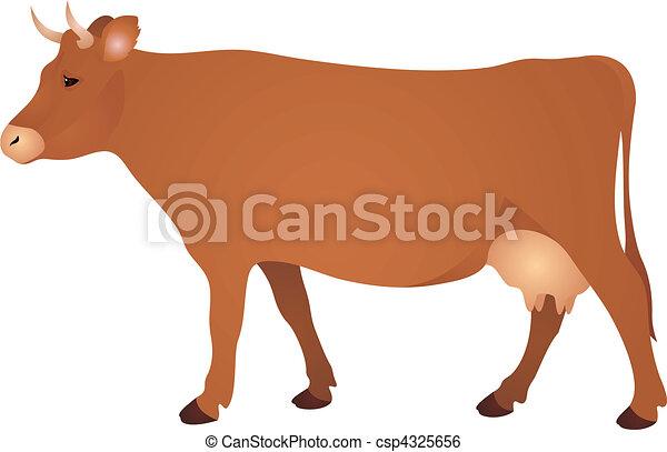 Cow vector  - csp4325656