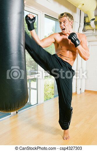Martial Arts Kick - csp4327303