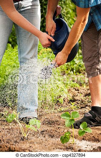 Gardening - watering the plants - csp4327894