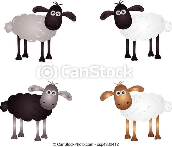 sheep - csp4332412