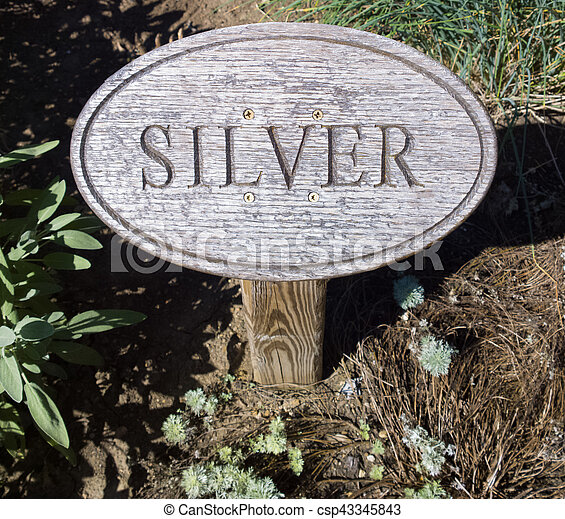 The Other Silver - csp43345843