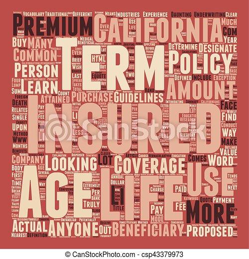 Term Life Insurance For Californians text background wordcloud concept - csp43379973