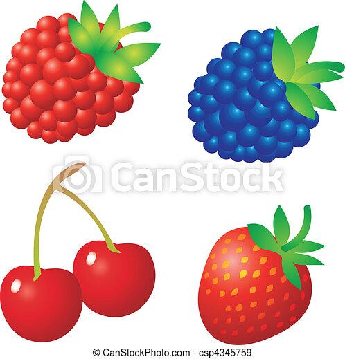 Berry vector - csp4345759