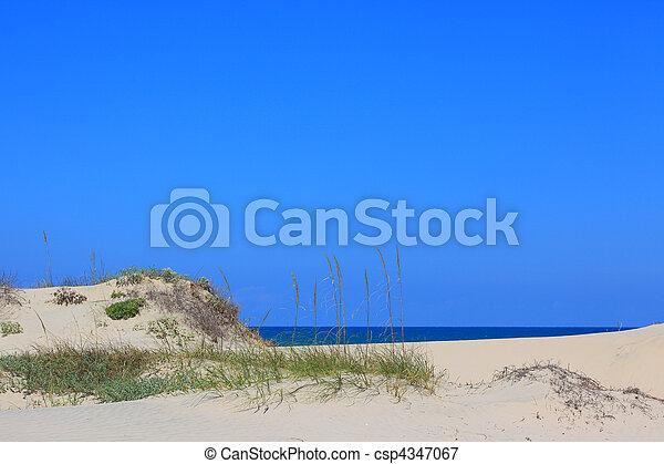 Beach Setting - csp4347067