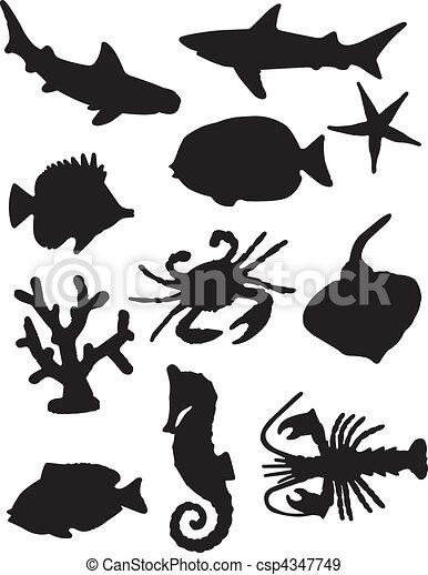 Sea Life Silhouettes - csp4347749