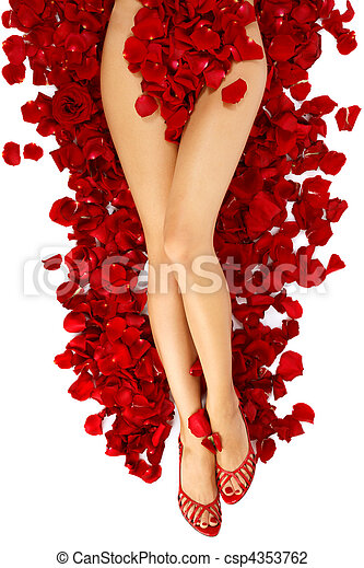 Woman legs on rose petals - csp4353762