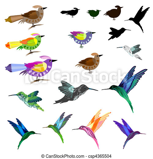 Birds set - csp4365504