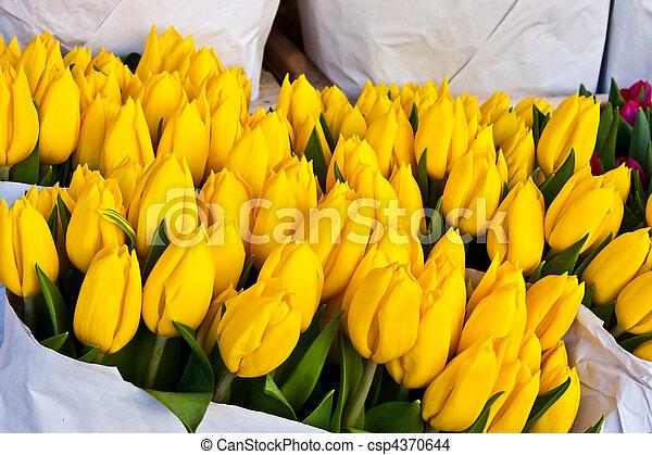 Amsterdam flowers market