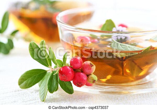 Vitality tea - csp4373037