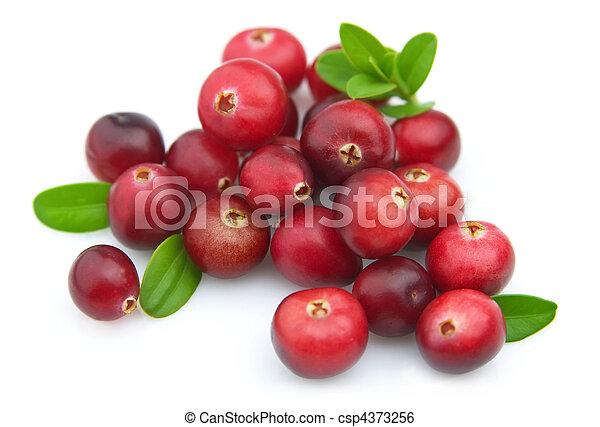 Ripe cranberry - csp4373256