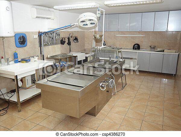 autopsy room medicine healthcare - csp4386270