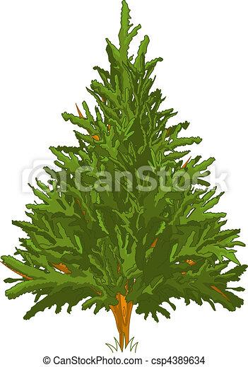 Pine Tree - csp4389634