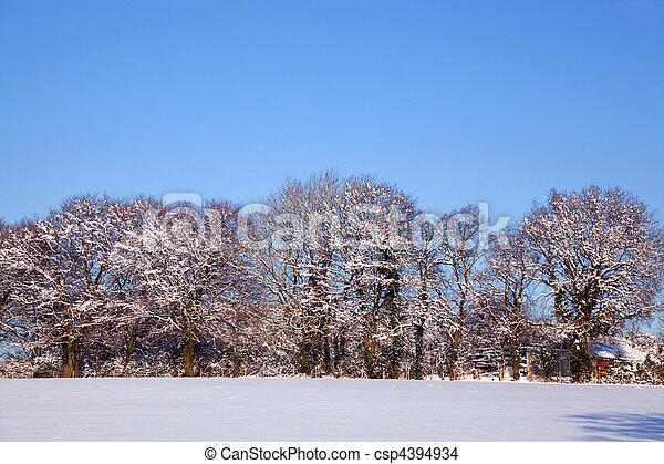 Snow landscape - csp4394934