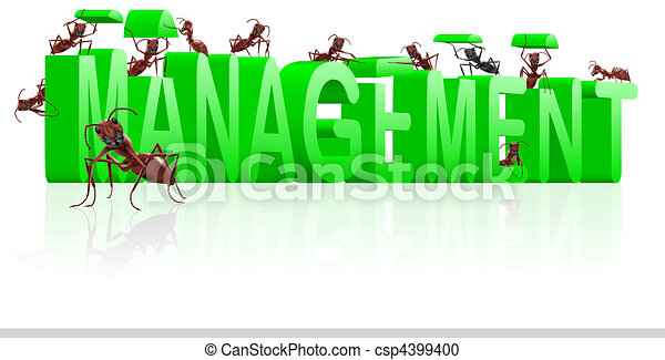 management manage organisation organise - csp4399400