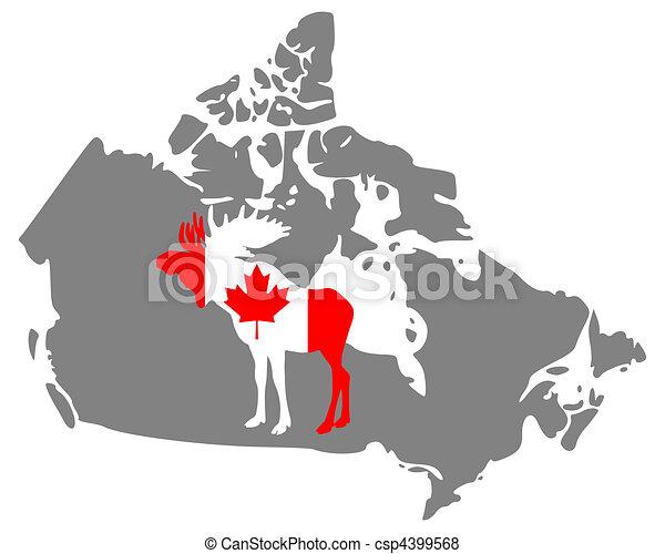 Canadian moose - csp4399568